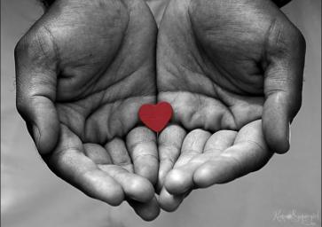 Heart-In-Hands-1024x723